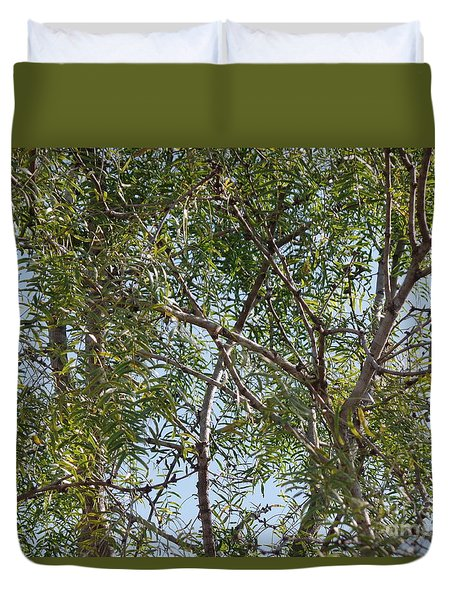 Duvet Cover featuring the photograph Central Texas Sky View Through Mesquite Trees by Ray Shrewsberry
