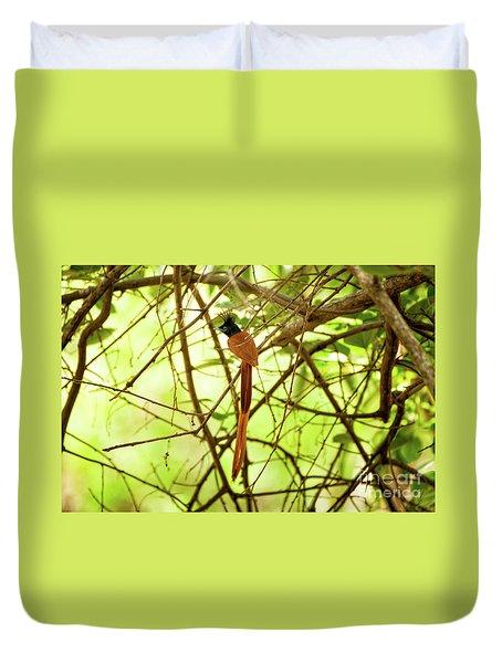 Ceylon Paradise Flycatcher Duvet Cover