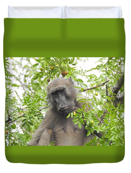Chacma Baboon Duvet Cover by Betty-Anne McDonald