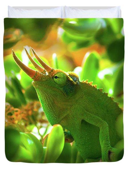 Chameleon King Duvet Cover