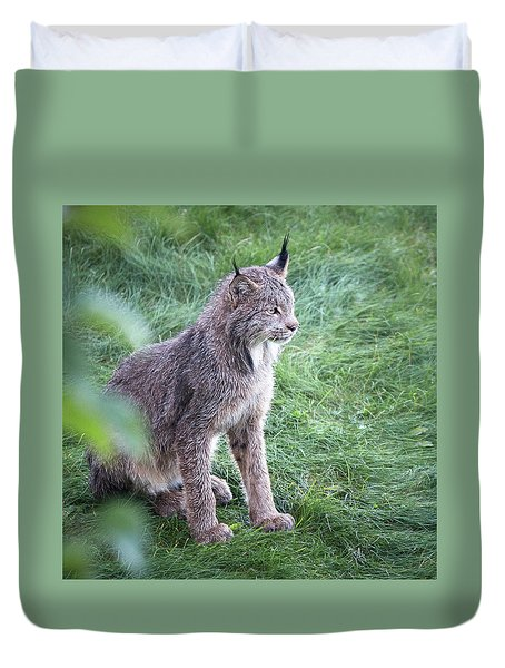 Champion Mama Lynx Duvet Cover