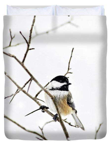 Charming Winter Chickadee Duvet Cover