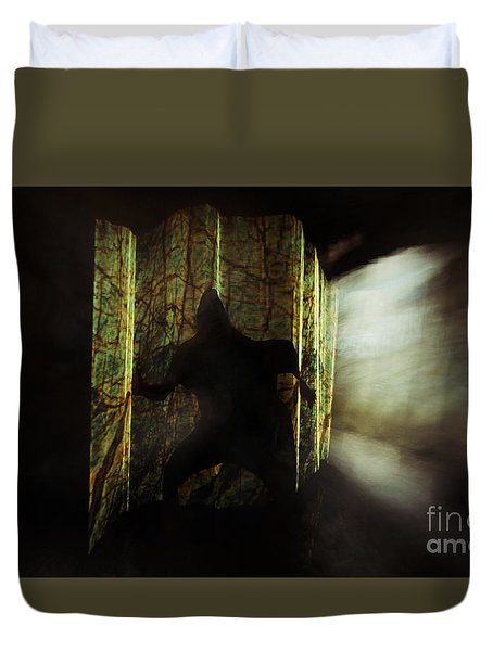 Chasing Shadows Duvet Cover