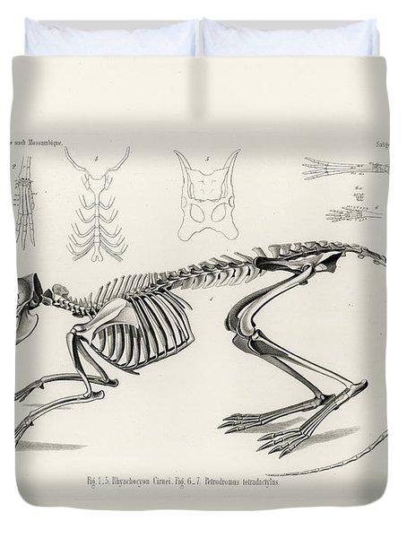 Checkered Elephant Shrew Skeleton Duvet Cover