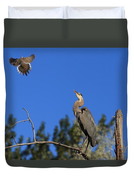 Duvet Cover featuring the photograph Checking Out The Hawk by Lynn Hopwood