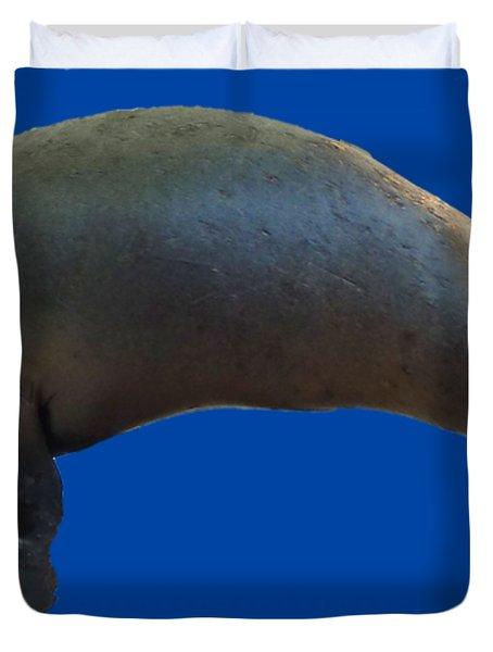 Cheeky Seal Duvet Cover
