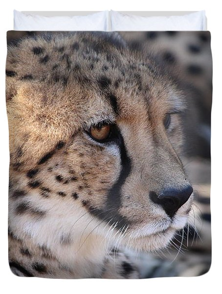 Cheetah And Friends Duvet Cover