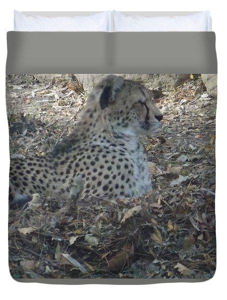 Cheetah At Rest Duvet Cover