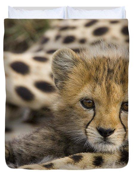 Cheetah Cub Portrait Duvet Cover