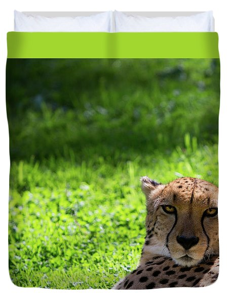 Duvet Cover featuring the photograph Cheetah Face by Rebecca Cozart
