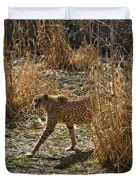 Cheetah  In The Brush Duvet Cover by Douglas Barnett