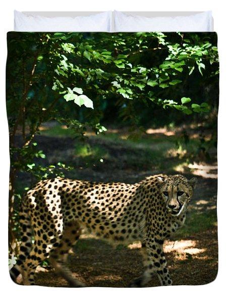 Cheetah On The In The Forest 2 Duvet Cover by Douglas Barnett