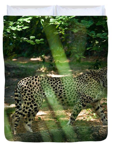 Cheetah On The In The Forest Duvet Cover by Douglas Barnett