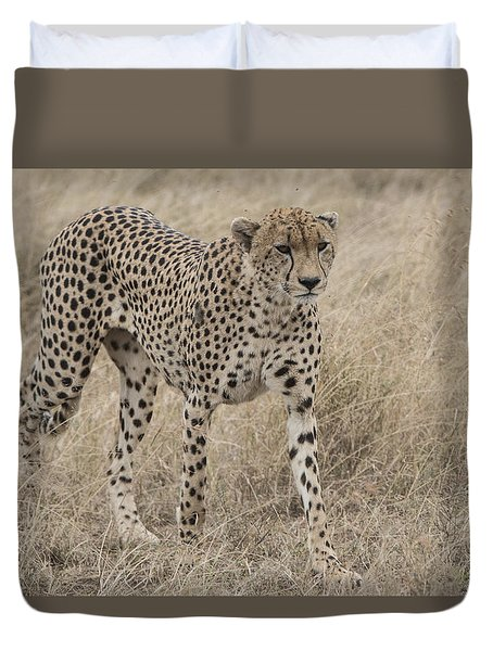 Cheetah On The Move Duvet Cover by Pravine Chester