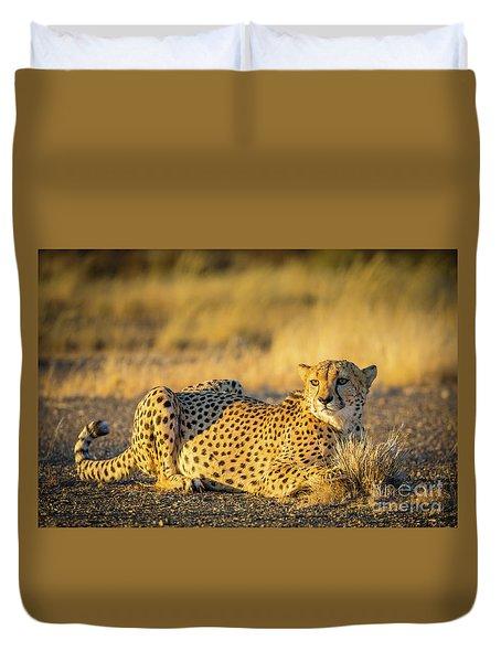 Cheetah Portrait Duvet Cover by Inge Johnsson