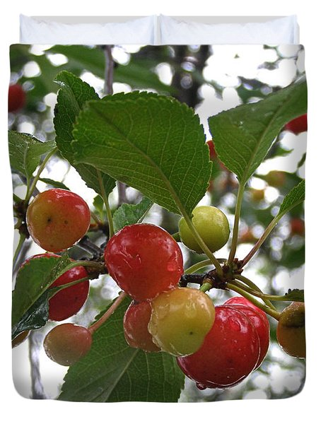 Duvet Cover featuring the photograph Cherries In The Morning Rain by Angie Rea