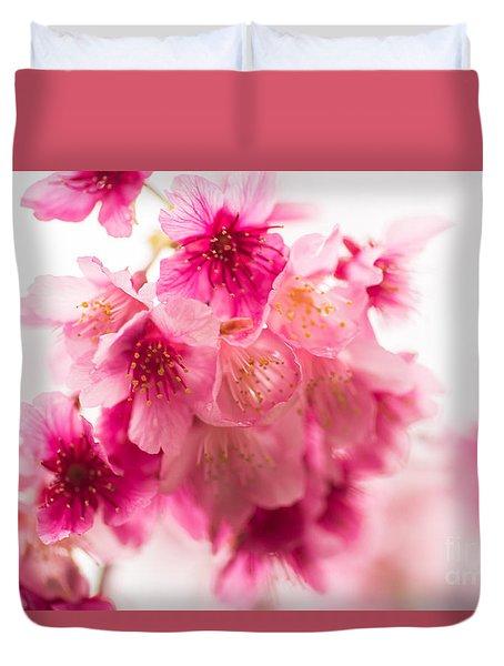 Cherry Blosoms 1 Duvet Cover