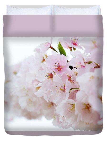 Cherry Blossom Focus Duvet Cover