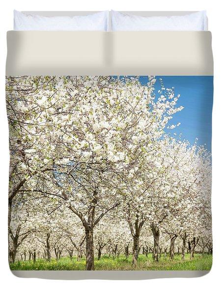 Cherry Blossom Time Duvet Cover
