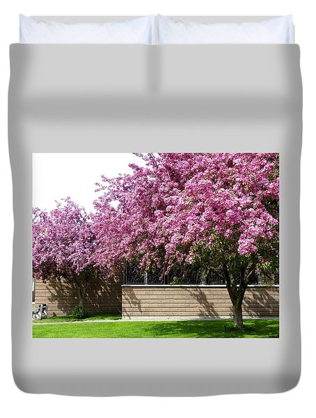 Cherry Blossoms 1 Duvet Cover by Will Borden