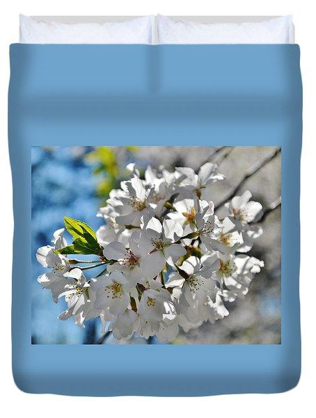 Cherry Blossoms 2 Duvet Cover