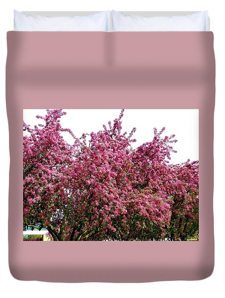 Cherry Blossoms 2 Duvet Cover by Will Borden