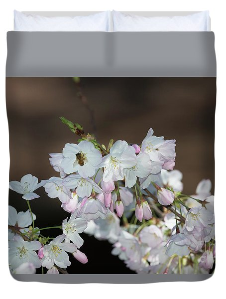 Cherry Blossoms Duvet Cover by Glenn Franco Simmons