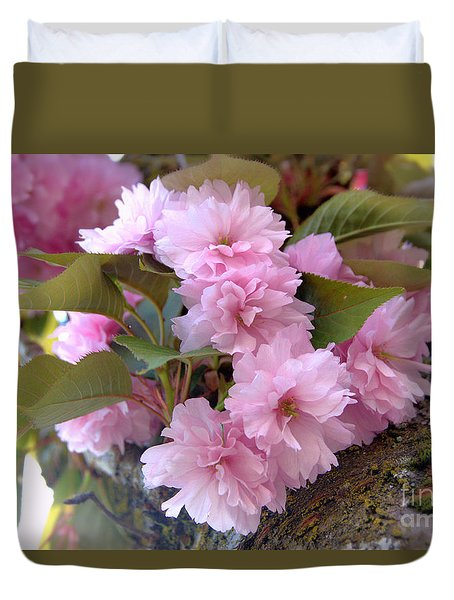 Cherry Blossoms Nbr2 Duvet Cover by Scott Cameron