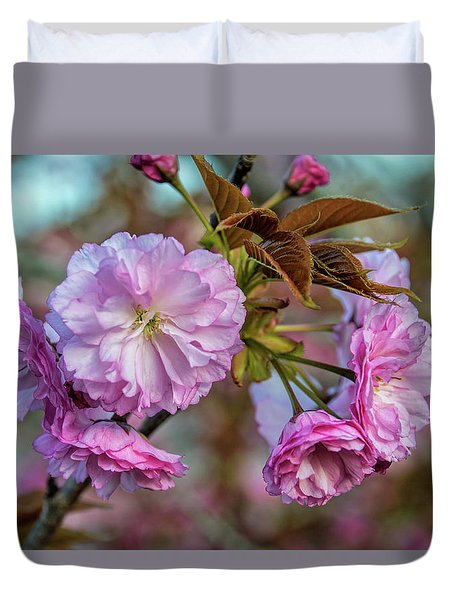 Cherry Blossoms Duvet Cover by Pat Cook