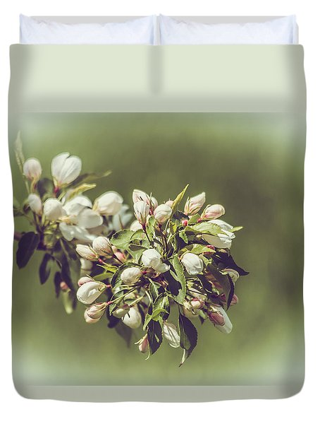 Cherry Blossoms Duvet Cover by Yeates Photography