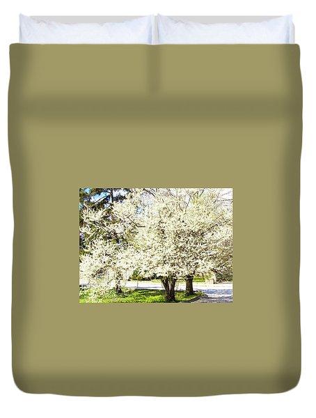 Cherry Trees In Blossom Duvet Cover by Irina Afonskaya