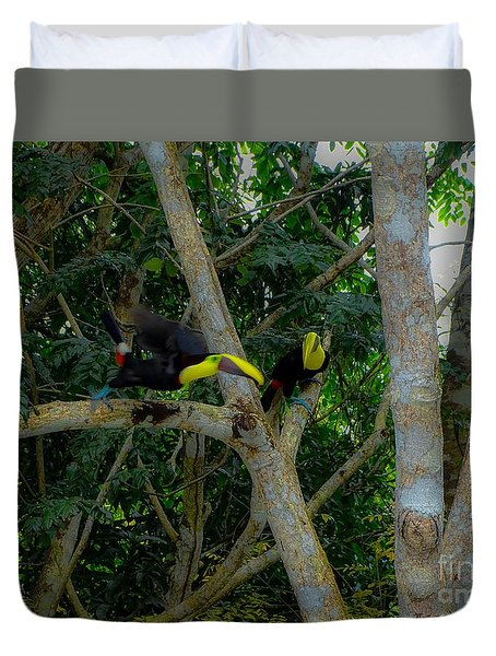 Chestnut-mandibled Toucans Duvet Cover