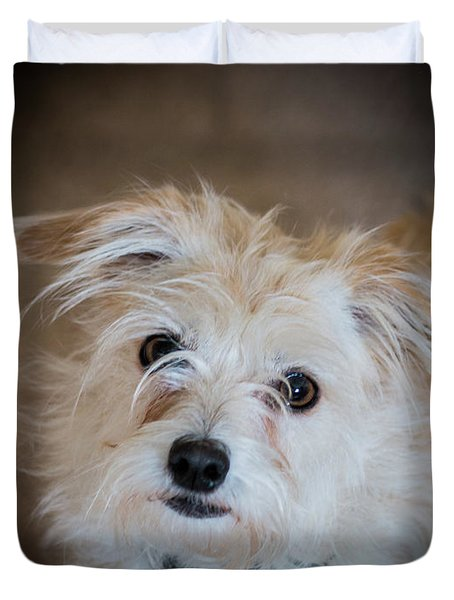 Chica On The Alert Duvet Cover