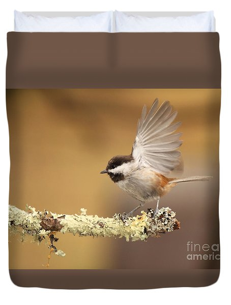 Duvet Cover featuring the photograph Chickadee Flipping Its Wings by Max Allen