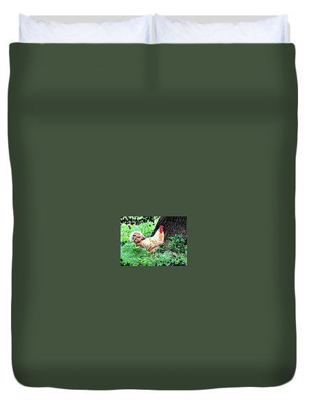 Chicken Inthe Woods Duvet Cover by Charles Shoup