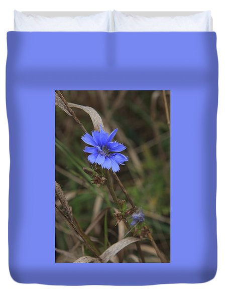 Duvet Cover featuring the photograph Chicory by Gary Hall