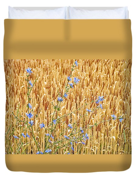 Chicory On Wheat Duvet Cover
