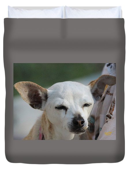 Chihuahua Snaggle Puss  Duvet Cover