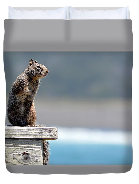 Chilly Squirrel Duvet Cover