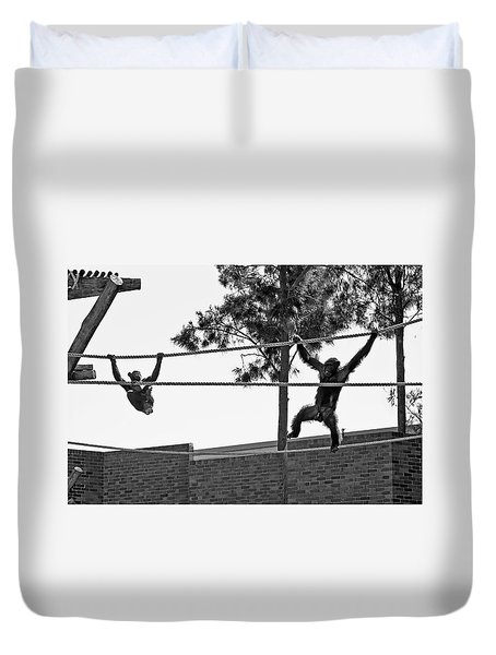 Duvet Cover featuring the photograph Chimps In Black And White by Miroslava Jurcik