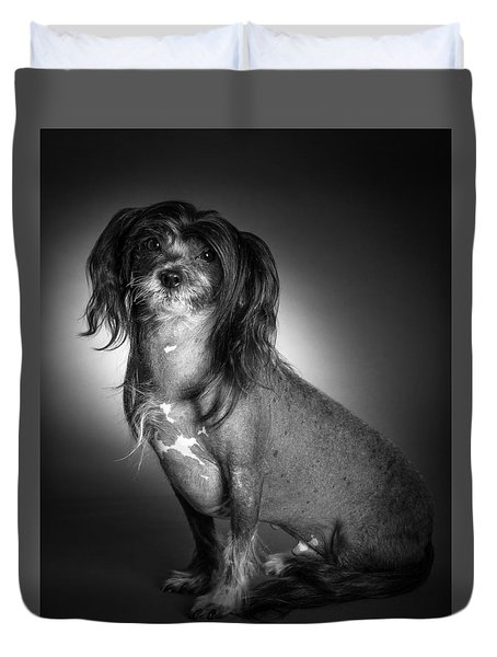Chinese Crested - 01 Duvet Cover by Larry Carr