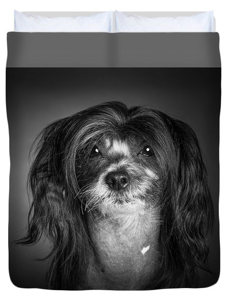 Chinese Crested - 02 Duvet Cover by Larry Carr