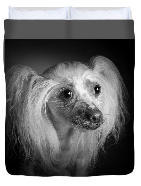 Chinese Crested - 04 Duvet Cover by Larry Carr