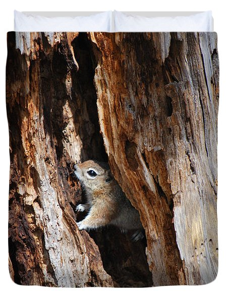 Chipmunk - Eager Arizona Duvet Cover by Donna Greene