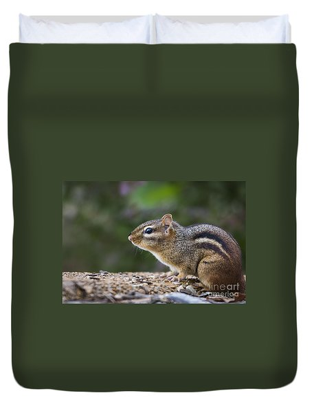 Chipmunk   Duvet Cover by Andrea Silies
