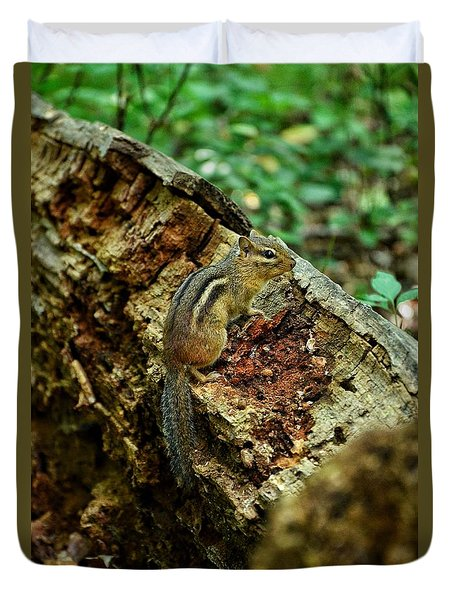 Duvet Cover featuring the photograph Chipmunk by Nikki McInnes