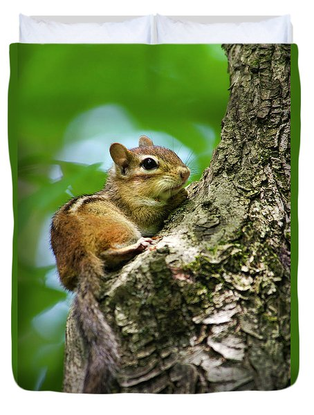 Chipmunk On A Limb Duvet Cover by Christina Rollo