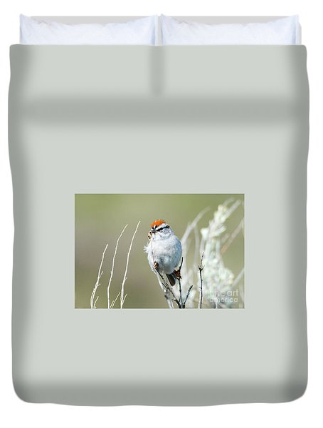 Duvet Cover featuring the photograph Chipping Sparrow by Mike Dawson