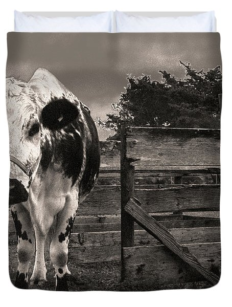 Duvet Cover featuring the photograph Chocolate Chip At The Stables by T Brian Jones