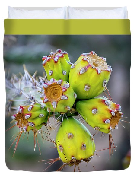 Duvet Cover featuring the photograph Cholla Fruit S48 by Mark Myhaver